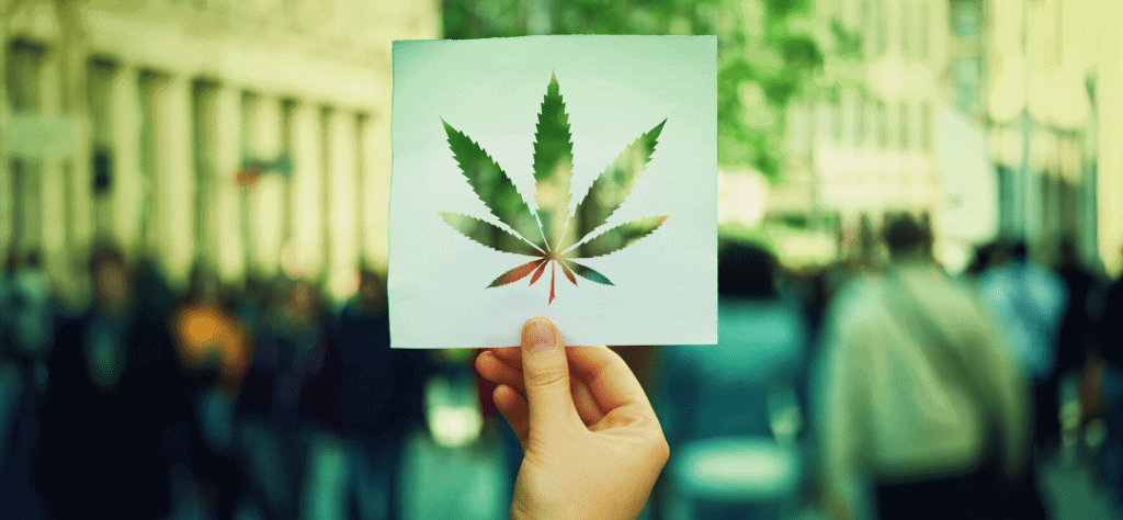 cannabis events and conferences