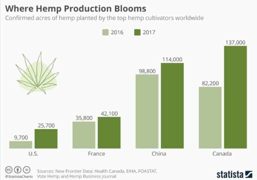 Chart Where Hemp Production Blooms cannabis stack