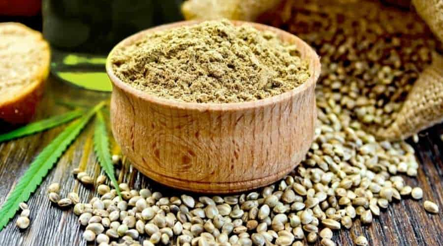 How to Germinate Marijuana Seeds - Our Step-by-Step Guide