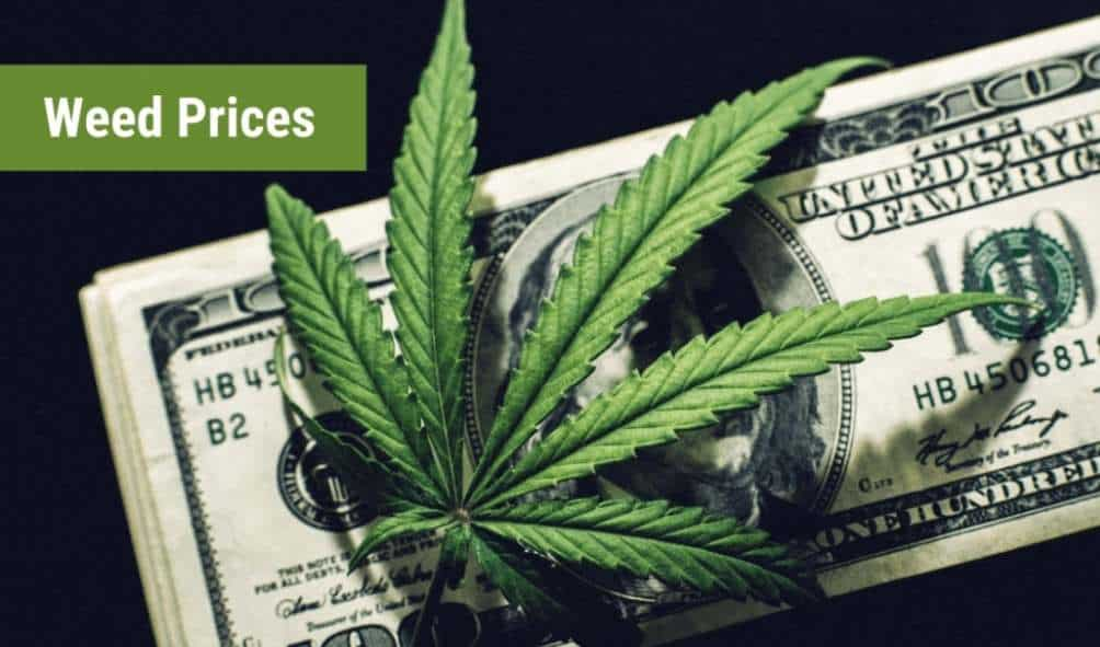 Weed Prices How Much Does a Gram of Weed Cost